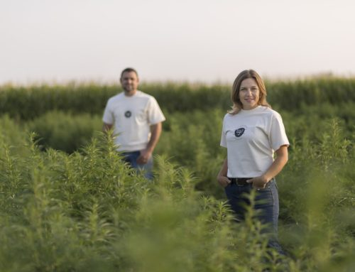 Western States Hemp: Capability Scale and Products